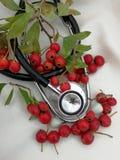 Tarjetas de Navidad médicas Imágenes de archivo libres de regalías