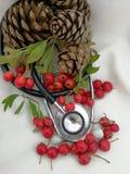Tarjetas de Navidad médicas Fotografía de archivo libre de regalías