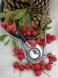 Tarjetas de Navidad médicas Imagen de archivo libre de regalías