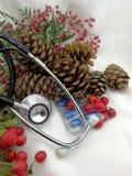 Tarjetas de Navidad médicas con las bayas y los conos del pino Imagenes de archivo