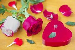 Tarjetas del día de San Valentín Day_10 Imagen de archivo