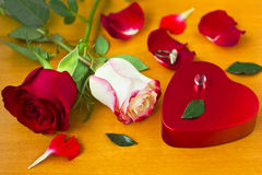 Tarjetas del día de San Valentín Day_11 Fotografía de archivo libre de regalías