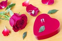 Tarjetas del día de San Valentín Day_13 Fotografía de archivo