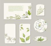 Tarjetas del diseño de las plantillas con las flores blancas de la fruta cítrica fotografía de archivo libre de regalías