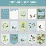 Tarjetas del tema de los pájaros del invierno de la Navidad Foto de archivo