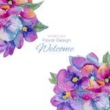 Tarjetas en acuarela, flores de la plantilla de la hortensia Fotos de archivo libres de regalías