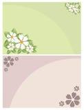 Tarjetas florales de la invitación libre illustration