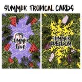 Tarjetas tropicales del verano Foto de archivo
