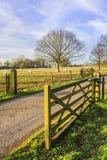 Country lane Royalty Free Stock Image