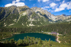 Tarn σε υψηλό Tatras, Σλοβακία Στοκ Εικόνα