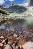 Tarn in High Tatras, Slovakia Royalty Free Stock Images