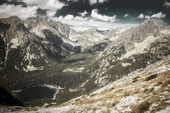 Tarn in High Tatras, Slovakia Royalty Free Stock Photography