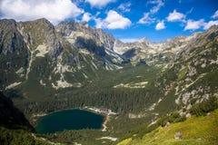 Tarn in hohem Tatras, Slowakei Stockfotografie