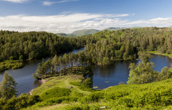 Tarn Howes, Angielski Jeziorny okręg, Cumbria, Anglia Zdjęcia Royalty Free