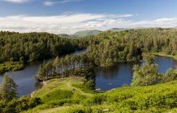 Tarn Howes, engelskt sjöområde, Cumbria, England Royaltyfria Foton