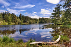 Free Tarn Hows Stock Images - 26767504