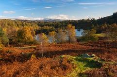 Tarn Hows in Autumn Stock Photography