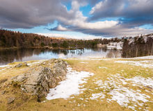 Tarn Hows Crag Stock Photos