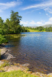 Tarn Hows Lake District National Park England uk near hawkshead Stock Images