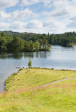 Tarn Hows Lake District National Park England uk near hawkshead Royalty Free Stock Photos