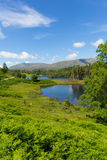 Tarn Hows Lake District National Park England uk near hawkshead Royalty Free Stock Photo