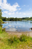 Tarn Hows Lake District National Park England uk near hawkshead Stock Image