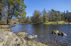 Tarn Hows in the Lake District Stock Photography
