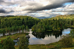 Tarn Hows Lake District Royalty Free Stock Photos
