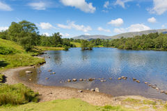Tarn Hows The Lakes Cumbria England uk on a beautiful sunny summer day Royalty Free Stock Photography