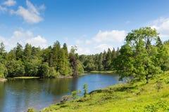 Tarn Hows nära Hawkshead nationalparken England UK för sjöområde på en härlig solig sommardag Arkivfoton