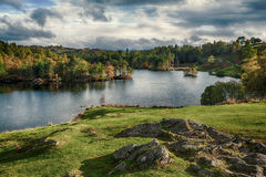 Tarn Hows Royalty Free Stock Photography