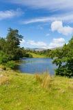 Tarn Hows near Hawkshead Lake District National Park England uk on a beautiful sunny summer day Stock Photo