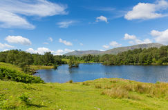 Tarn Hows near Hawkshead Lake District National Park England uk on a beautiful sunny summer day Stock Photo