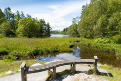 Tarn Hows near Hawkshead Lake District National Park England uk on a beautiful sunny summer day Royalty Free Stock Images