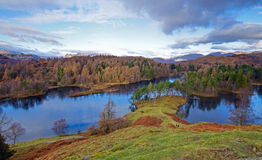 Tarn Hows North View Royalty Free Stock Photos