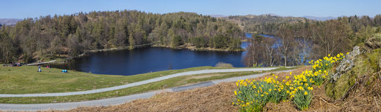 Tarn Hows at Spring in the Lake District. A beautiful Spring-time view of the picturesque Tarn Hows in the Lake District in Cumbria, UK Royalty Free Stock Photography