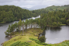 Tarn Hows in Summer Stock Photo