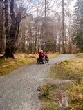 Tarn hows tramper Zdjęcie Royalty Free