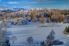 Tarn Hows in Winter 1 Stock Photos
