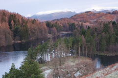 Tarn Hows in Winter Stock Photos