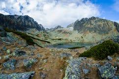 Tarn i höga Tatras, Slovakien royaltyfri fotografi
