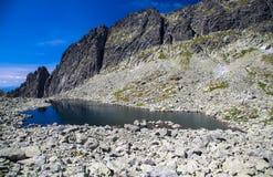 Tarn in mountains. Tarn - Wahlenbergovo pleso - in High Tatras mountains, Slovakia Royalty Free Stock Photos