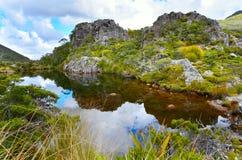 Tarn nahe Fenella Hut, Nationalpark Kahurangi lizenzfreie stockfotos