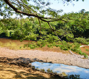 Tarn run dry landscape and mountain Stock Image