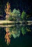 Tarn Vrbicke pleso, Slovakien Fotografering för Bildbyråer
