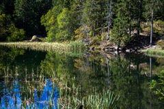Tarn Vrbicke pleso, Slovakien Royaltyfria Bilder