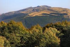 """Tarnicaheuvel en Prowcza-Pas in Bieszczady-Bergen in het Nationale Park van Zuidoostenpolen †""""Bieszczadzki Stock Afbeeldingen"""