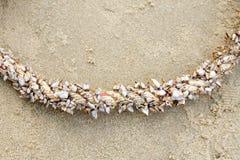 Tarnish гусыня или щипцы на имени большой веревочки научном anserifera Lepas стоковая фотография rf