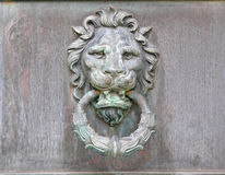 Tarnished Brass or Copper Lion head Door knob Knocker Royalty Free Stock Photos