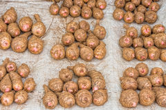 Taro corm for sale Royalty Free Stock Photos